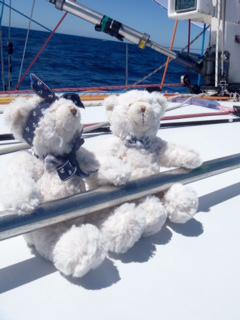 All bears on deck for RSHYR